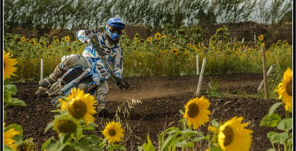 Flower Powered - PaleBlue - Motocross Pictures - Vital MX