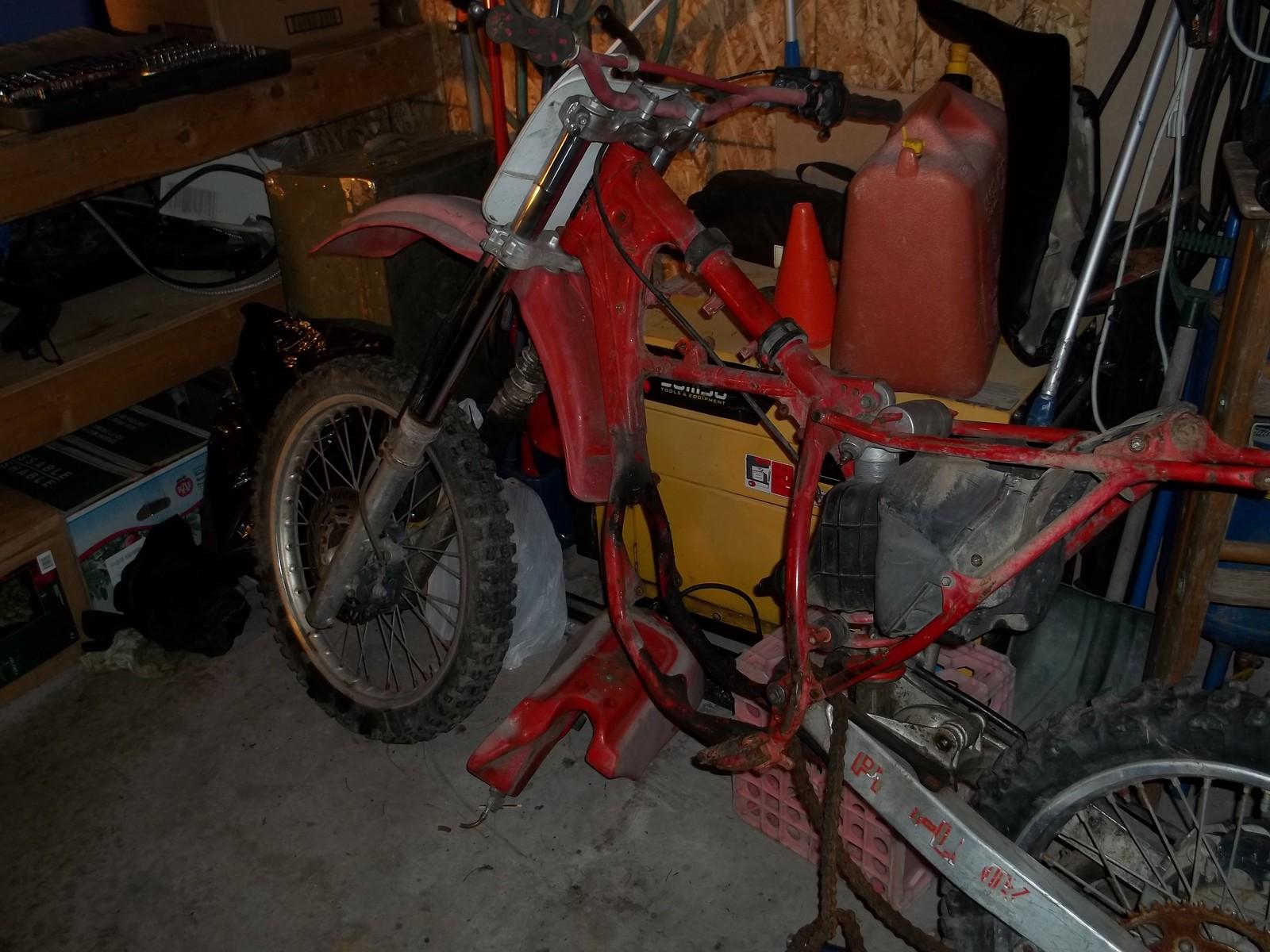 100 1772 - Catseyes1313 - Motocross Pictures - Vital MX