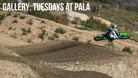 Photo Gallery: Just Another Tuesday at Pala