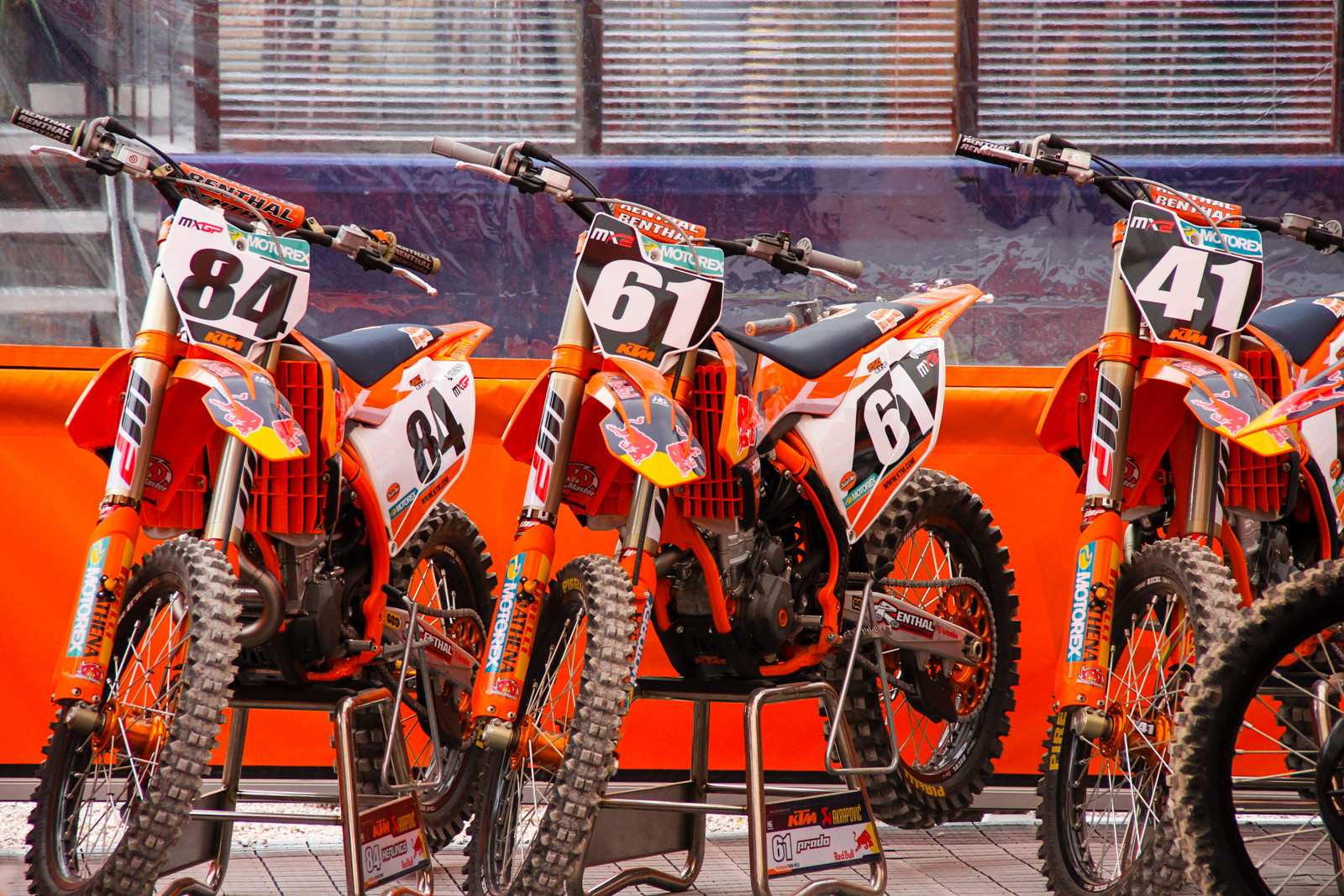 Factory Red Bull KTM MX2 and Herlings - Photo Blast: 2017 MXGP of Trentino - Motocross Pictures - Vital MX