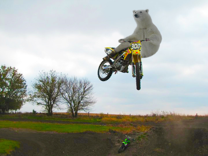 Bro whip? - Moto-Related - Motocross Forums / Message Boards - Vital MX