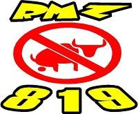 RMZ819