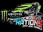 Paulin and Frossard look ahead to the 2011 Motocross of Nations
