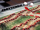 2013 Daytona Animated Track Map