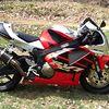 Vital MX member Honda lover 707