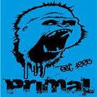 Vital MX member Primal X Motorsports