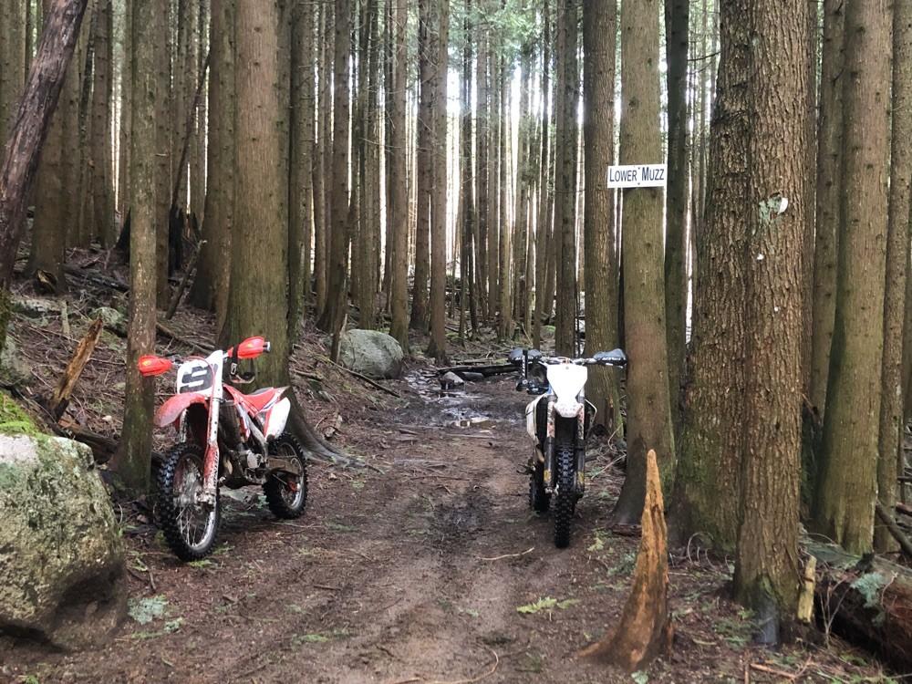 IMG 7679 1585184118309 - godog - Motocross Pictures - Vital MX