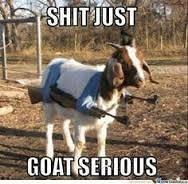S200x600_goat_1472773128