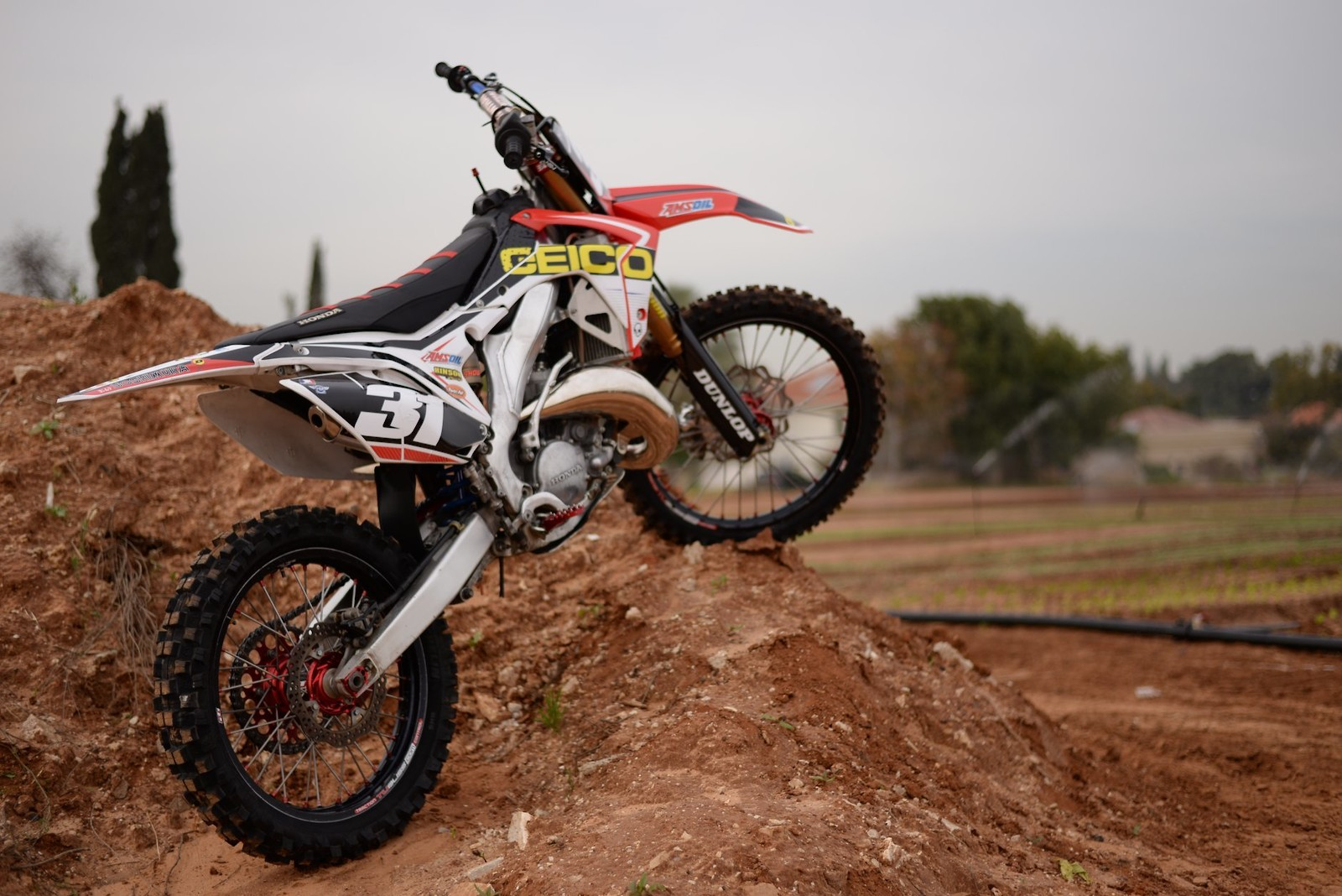 27797902 10215599810326012 115082633849855354 o - Yotam - Motocross Pictures - Vital MX