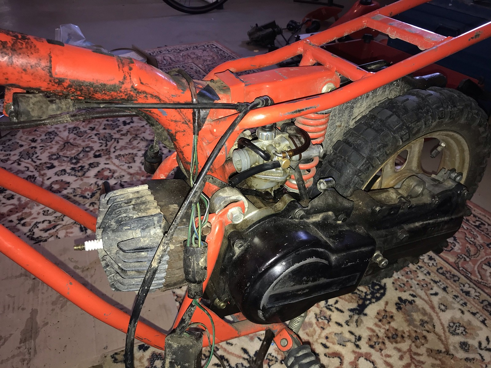 CB9E6545-5928-4CFF-9D20-FCA485A493F2 - Godcho - Motocross Pictures - Vital MX