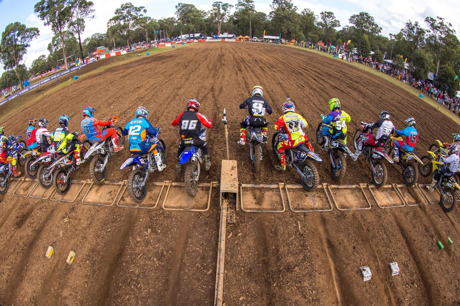 Kale Makeham - Australian Motul Motocross Nationals Round 2, Appin - Motocross Pictures - Vital MX
