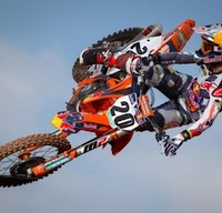 freebroctickle