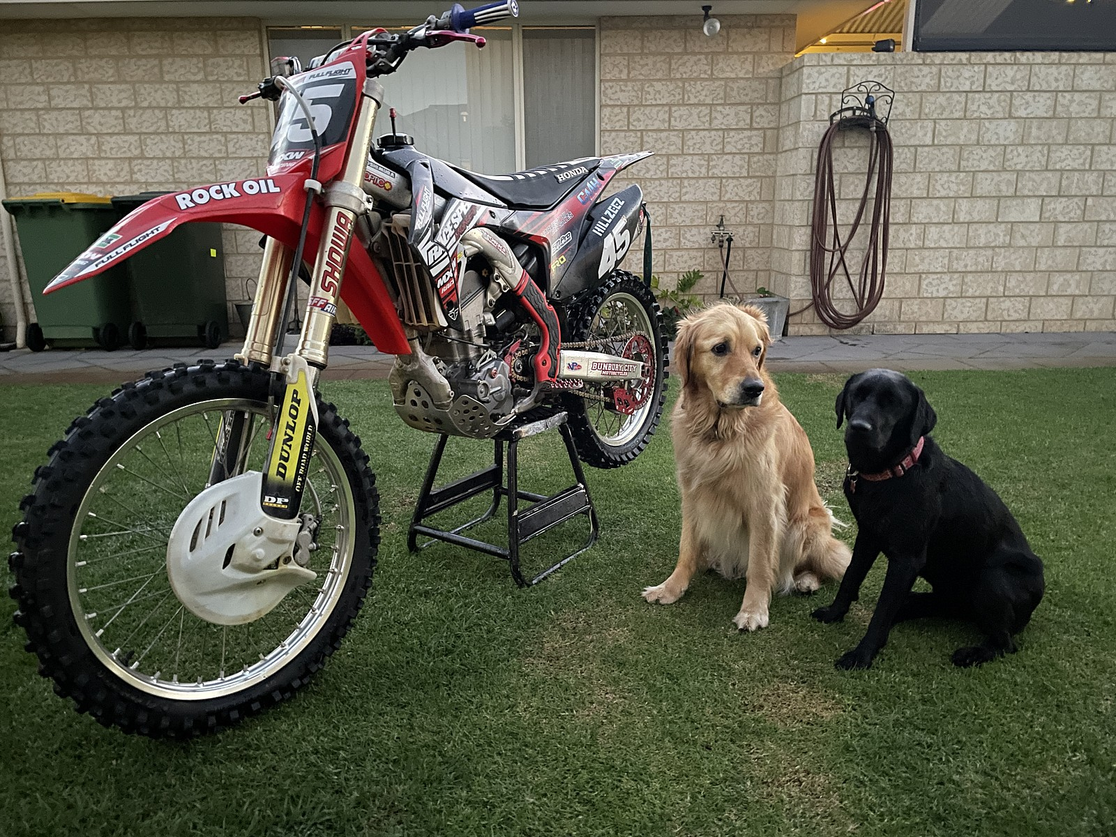 IMG-7937 - Brock183 - Motocross Pictures - Vital MX