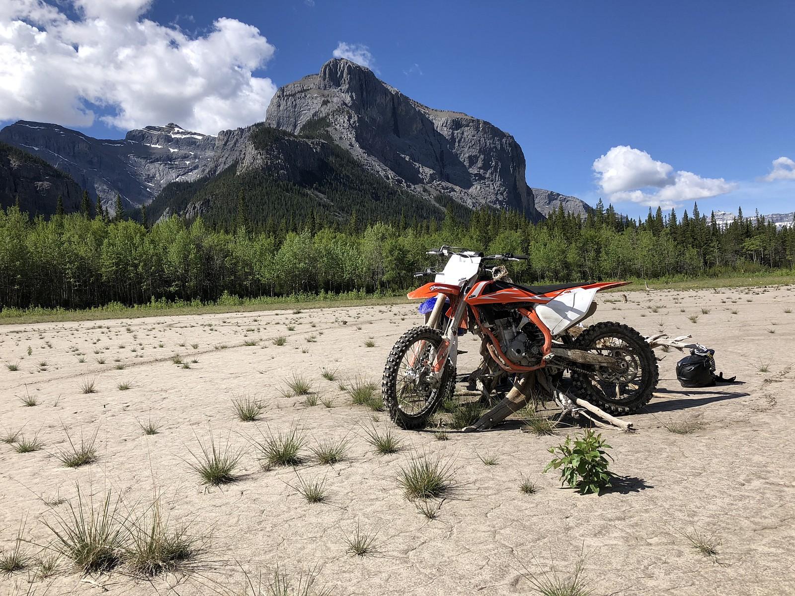 IMG 0487 - kelsomguirkin982 - Motocross Pictures - Vital MX